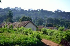 CLT Module 1: Kajjansi, Uganda